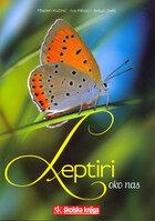 Leptiriokonas