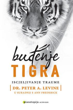 Budjenje tigra m