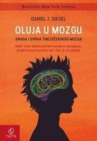 Oluja u mozgu