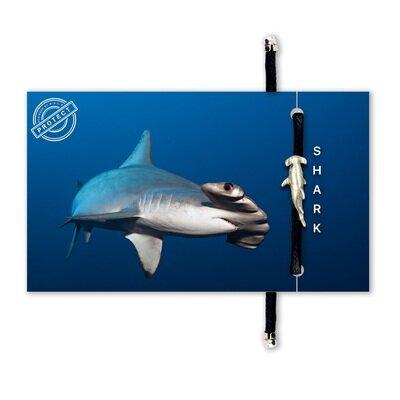 Eko narukvica bold hammerhead shark 1