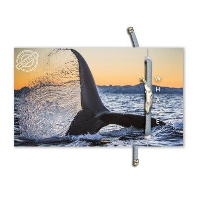 Eko narukvica bold whale 1