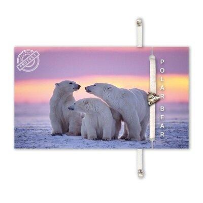Eko narukvica bold polar bear 1