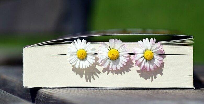 Book 2319957 640