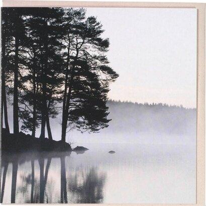 Čestitka trees in the fog