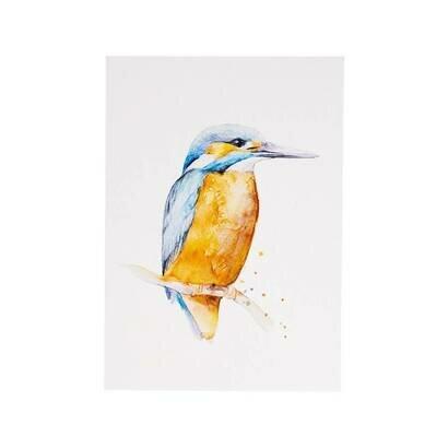 Razglednica kingfisher