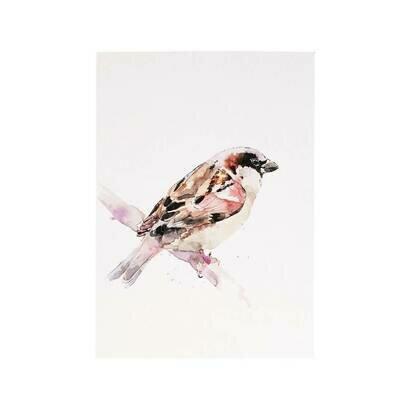 Razglednica sparrow